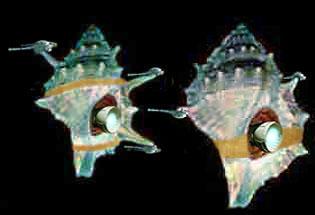 Artwork by Nat : Hutt battleship, concept.