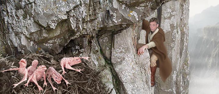 As Luke climbs he disturbs a nest of hawk-bats below the Hutt castle tower. Artwork by Scott.